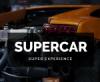 Best Automotive WordPress Themes For Car Dealer, Workshop & Services