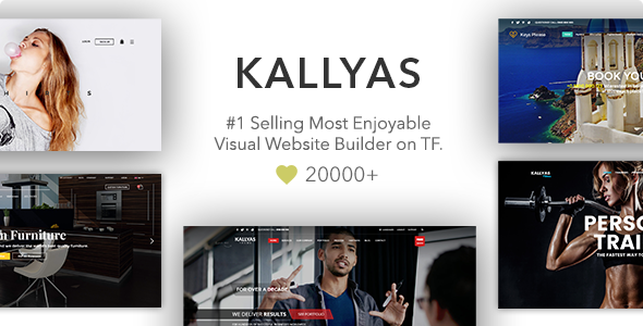 Best-WP-theme-for-teachers-Instructors-kallyas-preview