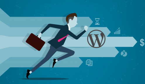 Top Tricks and Hacks To Boost Your WordPress Site Performance