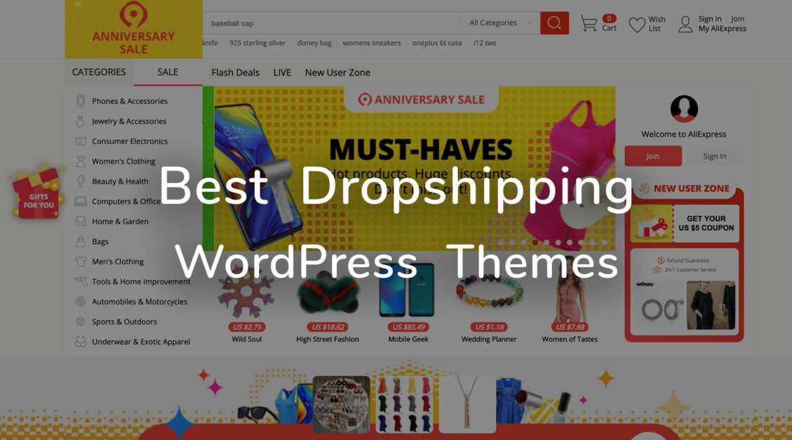dropshipping wordpress themes