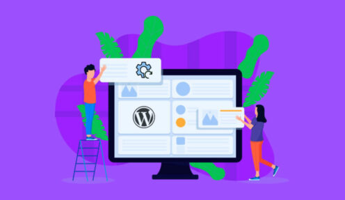 How to Reset your WordPress with the WP Reset Plugin?