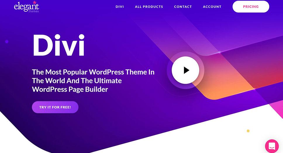 divi wordpress business themes