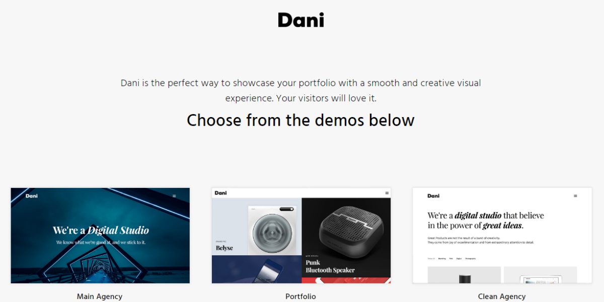 dani portfolio wordpress theme