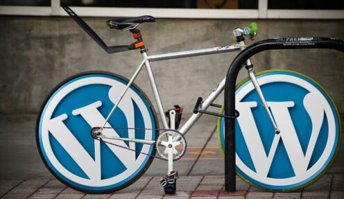 5 Top Reasons to Choose WordPress for your Ecommerce Store