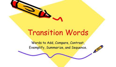 TOP Yoast SEO Transition Words in WordPress