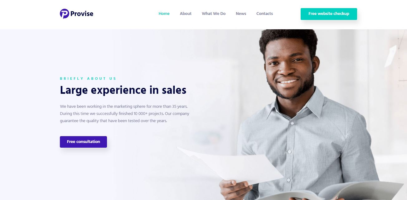 provise business and financial wordpress solution
