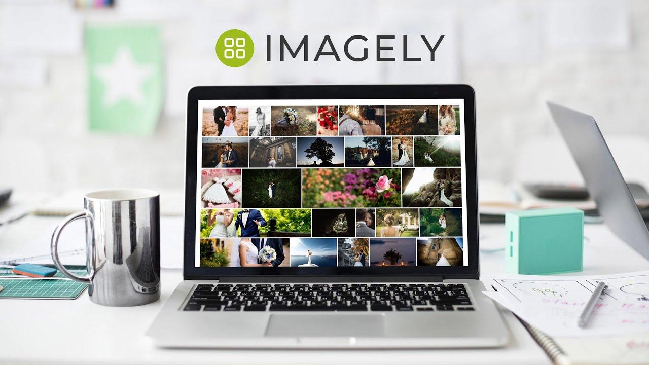 nextgen wordpress gallery plugin