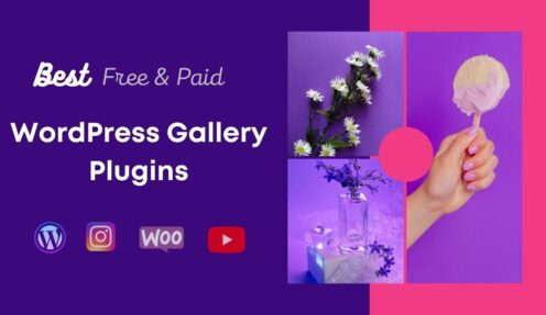 WordPress Gallery Plugin – Which One is The Best?